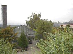 Aufbau des Gewächshauses im Pflanzenzentrums
