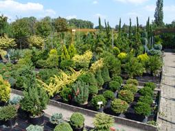 Produktionsflächen für Pflanzen mit umweltfreundlicher Bewässerungstechnik