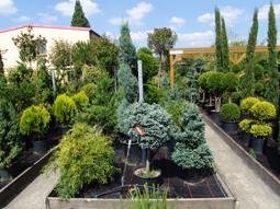 Eigene Pflanzen-Produktionsflächen mit Schonung der Ressourcen Boden und Wasser